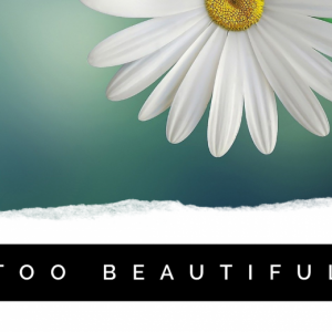 Too Beautiful (Song – .mp3 download)