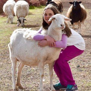 Eva-Sheep-Saleh-Carefarm-Sponsor-2