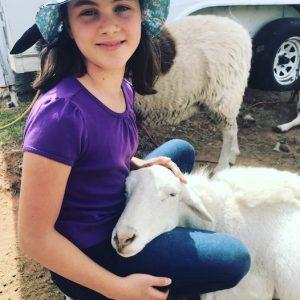 Eva-Sheep-Saleh-Carefarm-Sponsor-4