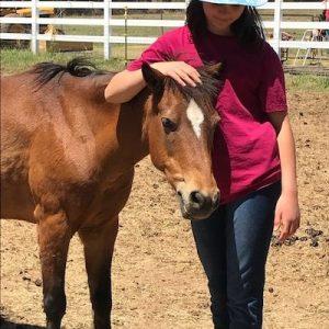 Little-Chey-Horse-Selah-Carefarm-Sponsor-2